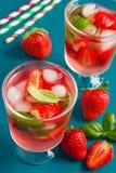 可口刷新的饮料用新鲜的草莓和蓬蒿 库存照片