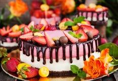 可口双重乳酪蛋糕装饰用巧克力和新s 免版税库存图片
