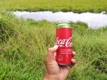 可口可乐铝罐饮料与甜叶菊的 免版税库存照片