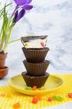 可口和健康酸奶干酪点心用在巧克力釉的胡说和脯 库存照片