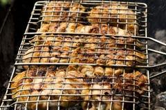 可口和水多的鸡 免版税库存图片