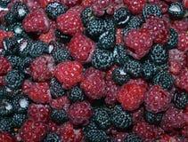 可口夏天黑色宏观宏观蓝色特写镜头黑莓水多的饮食草莓成熟果子点心蓝莓新健康swe 免版税库存图片