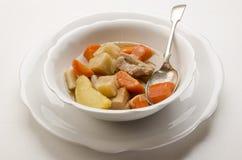 可口家做了在一个白色碗的爱尔兰人的菜肴 库存照片