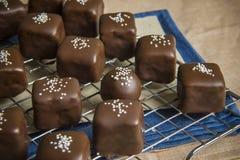 巧克力果仁糖 免版税库存照片
