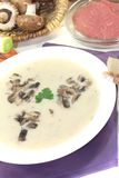 可口小牛肉奶油汤用荷兰芹 图库摄影