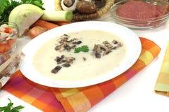 可口小牛肉奶油汤用荷兰芹 库存图片