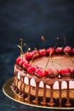 可口巧克力和樱桃乳酪蛋糕点心装饰与 免版税库存照片