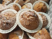 可口巧克力松饼用在篮子的搽粉的糖 免版税库存图片