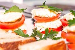 可口开胃菜,西红柿原料用乳脂干酪 图库摄影