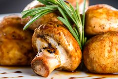 可口开胃被烘烤的蘑菇用在一块白色板材的调味汁 图库摄影
