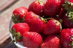 可口新鲜的草莓 库存图片