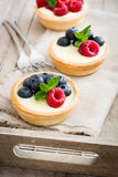 可口果子馅饼用莓和蓝莓 图库摄影