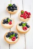 可口果子馅饼用莓和蓝莓 库存图片