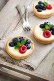 可口果子馅饼用莓和蓝莓 免版税库存图片