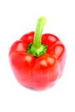 可口查出的辣椒粉红色鲜美 免版税库存照片