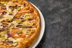 可口比萨乳酪汉堡 免版税库存照片