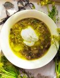 可口汤或绿色borch 库存图片