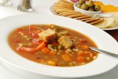 可口汤蔬菜 库存图片