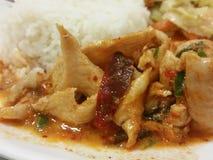 可口泰国食物鸡panang咖喱 免版税库存图片