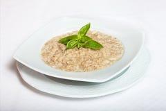 可口滋补和健康新鲜的古板的燕麦粥 免版税库存图片