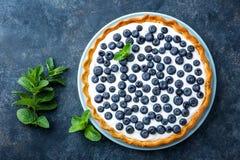 可口点心蓝莓馅饼用新鲜的莓果和打好的奶油,甜鲜美乳酪蛋糕,莓果饼 库存照片