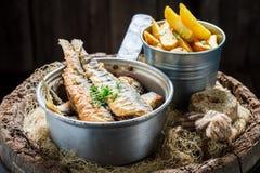 可口烤鲱鱼钓鱼与在老桶的盐 库存照片