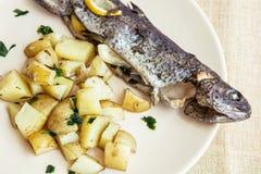 可口烤鳟鱼用土豆,国际烹调 免版税图库摄影