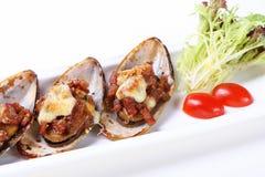 可口牡蛎 免版税库存照片