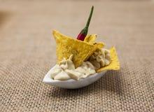 可口犹太hummus用辣红辣椒芯片塔帕纤维布开胃菜 库存图片