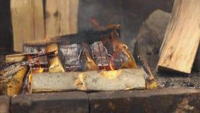 可口猪肉火腿大大块在开火烹调了 街道食物 户外食物 野营和烹调在a 股票视频