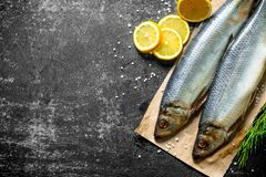 可口盐味的鲱鱼用柠檬和草本 库存图片