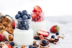 可口简单的酸奶用新鲜的蓝莓和草莓在a 免版税库存照片