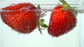 可口红色草莓在碳酸化合的清楚的水中游泳 股票录像
