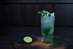 可口美丽的酒精鸡尾酒'Mojito' 免版税图库摄影