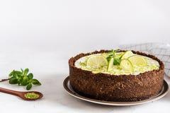 可口自创乳酪蛋糕用与咖啡的石灰和胡椒薄菏在白色桌,侧视图,拷贝空间上的 库存照片