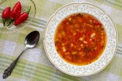 可口自创传统保加利亚豆汤突然移动chorba顶视图用辣椒粉,蕃茄,葱和香料,服务与 库存照片