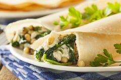 可口自创菠菜和希脂乳美味法国人绉纱 库存照片