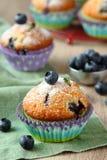 可口自创蓝莓松饼用新鲜的蓝莓 免版税库存图片