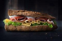 可口自然和饮食三明治 免版税库存图片