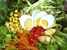 可口节食的食物,新鲜蔬菜 免版税图库摄影