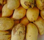 可口芒果果子在农村市场上 库存照片