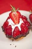 可口草莓果子馅饼 免版税库存图片