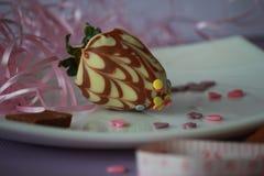可口草莓用棕色和白色巧克力 库存照片