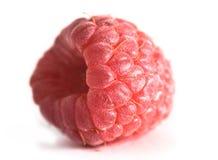 可口莓 免版税图库摄影