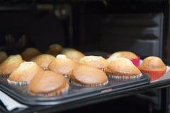可口被烘烤的杯形蛋糕 免版税库存图片