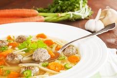 可口详细资料汤蔬菜 图库摄影