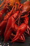 可口食物 巨蟹星座煮沸的河 库存照片