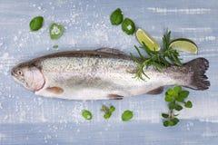 可口鳟鱼。海鲜。 库存照片