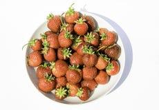 可口,那么在一块白色板材的甜和水多的草莓 免版税库存照片