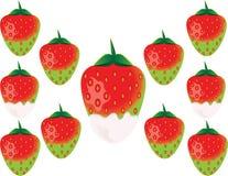 可口绿色草莓 库存照片